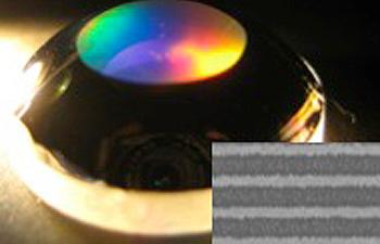 bio-pol-sel-lens